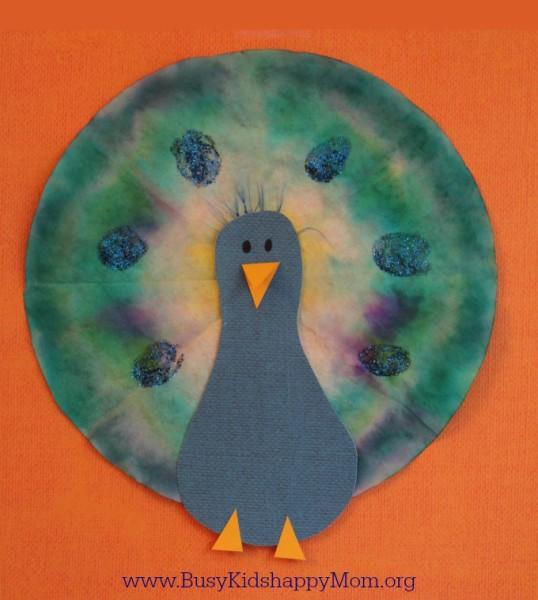 peacock square