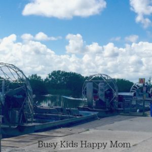 How to Find an Everglades Airboat with Alligators
