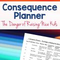 Tim Smith's Consequence Planner
