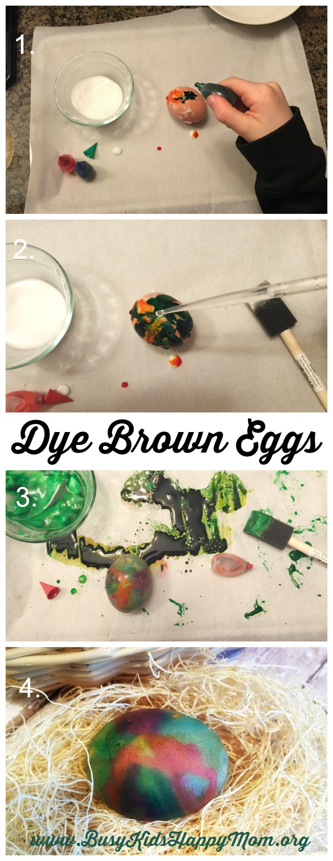 How to Dye Brown Eggs steps
