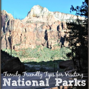 Family Friendly Tips for National Parks
